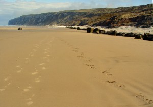 Speeton sands