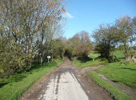Hoddy Cows Lane